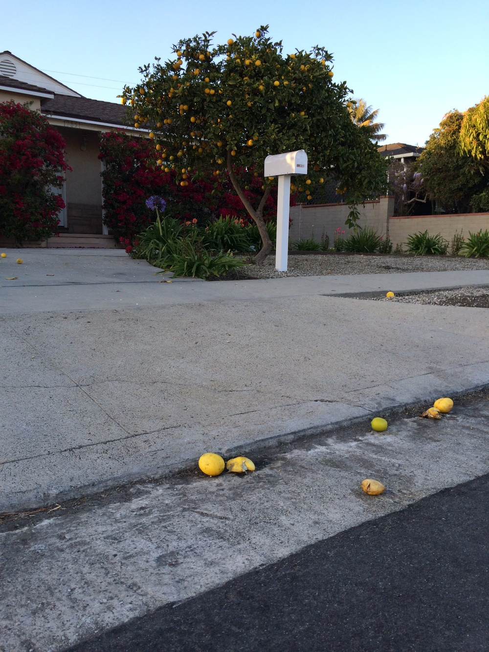 Lemons rolling into the streets...
