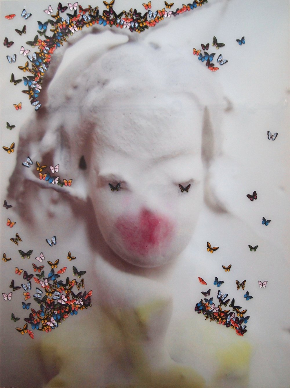 penny (mariposa)  22x29  macrophotograph portrait backprinted onto glass, stickers, varnish