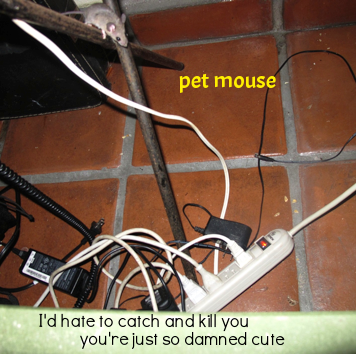 petmouse.png
