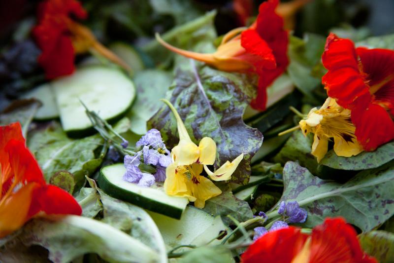 4, Garden Party '13.jpg