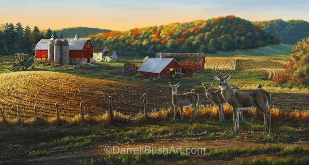 Harvest Time Darrell Bush Art