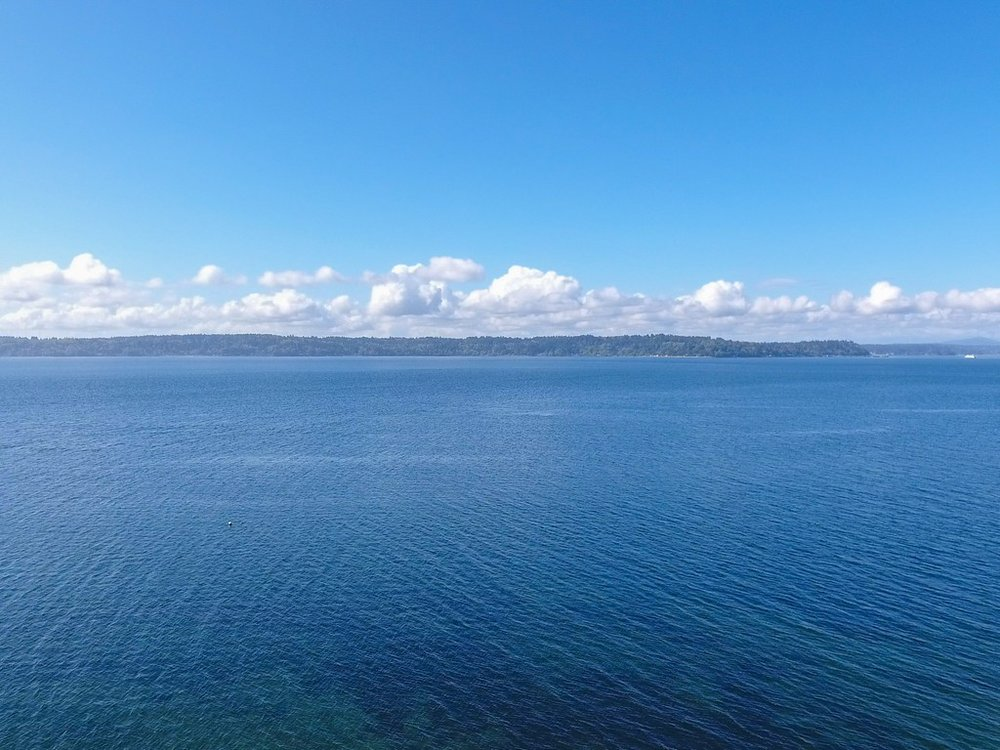#4 Puget Sound's Tranquil View.jpg