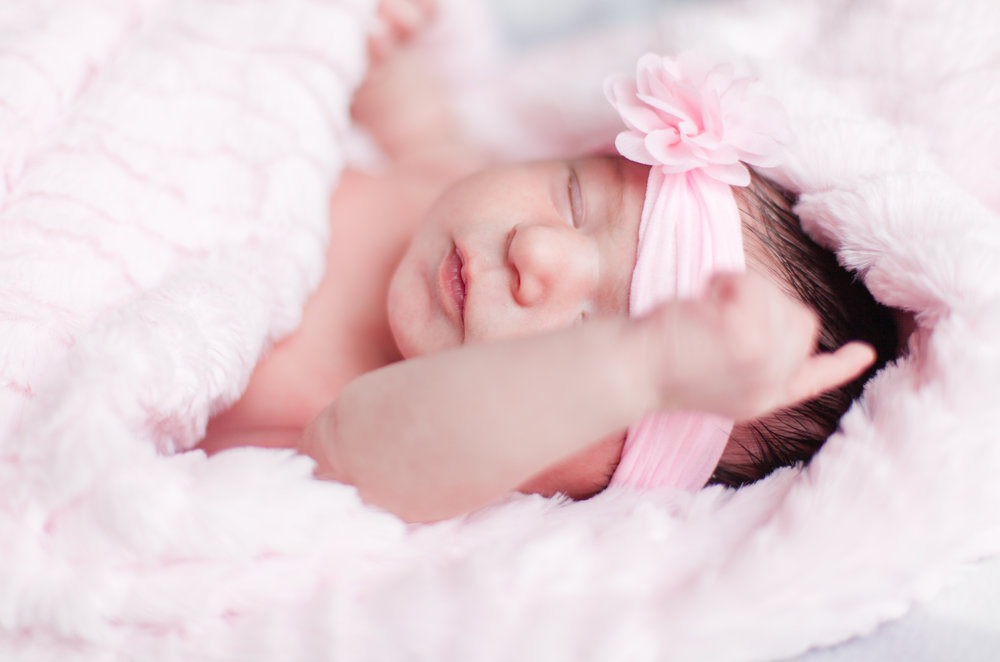 newborn, baby, girl, pink, bows, flowers, grey, photography