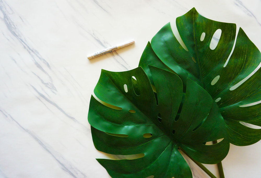 Materials - - fake monstera leaves (or an assortment of other tropical leaves)- chalk marker