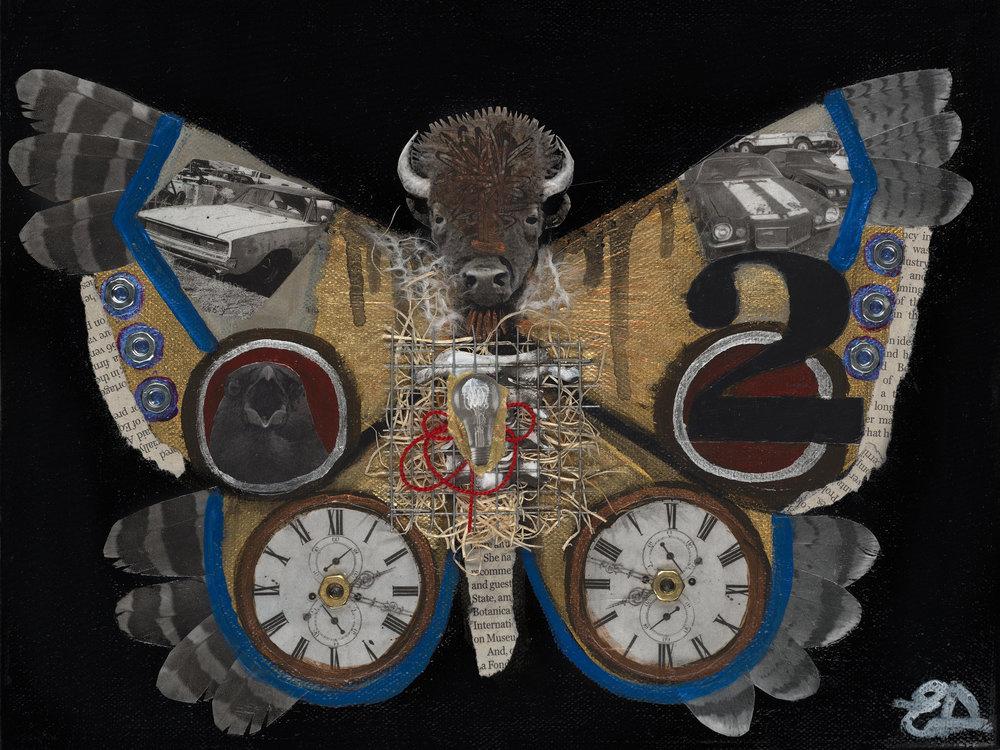 """""""Butterfly 2"""""""