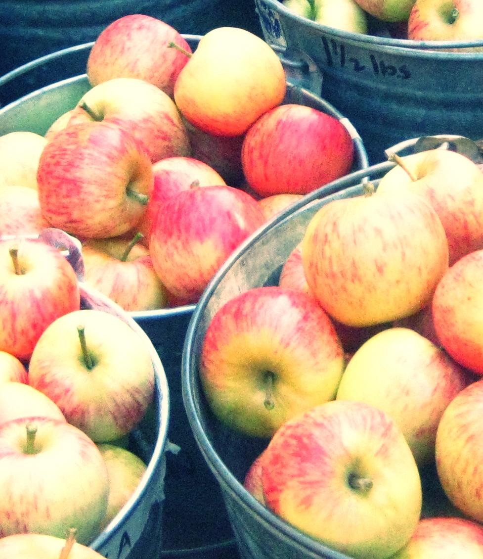 Fall Fruit Care