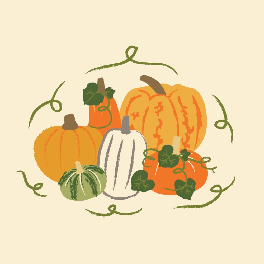 KMarshello_Harvest_Pumpkins.png