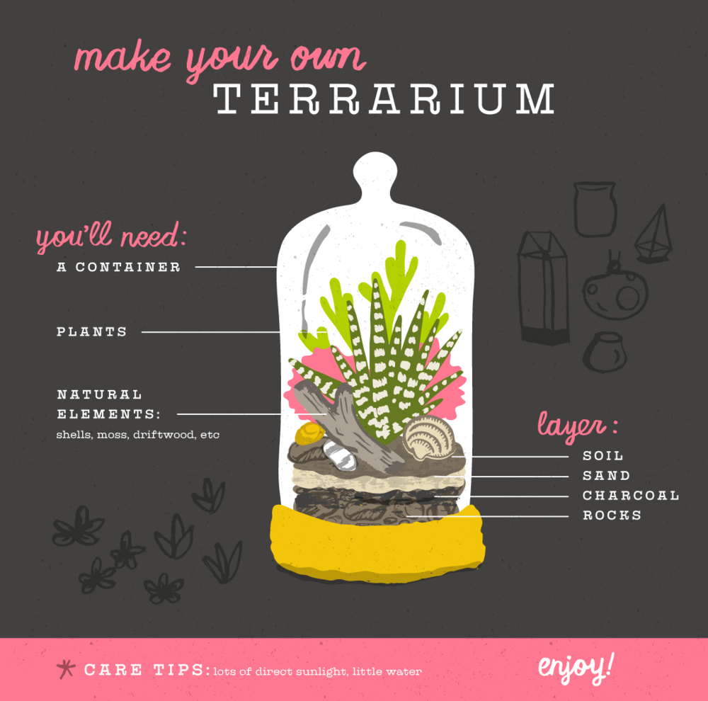 Kat_Marshello_Make_Terrariums.png