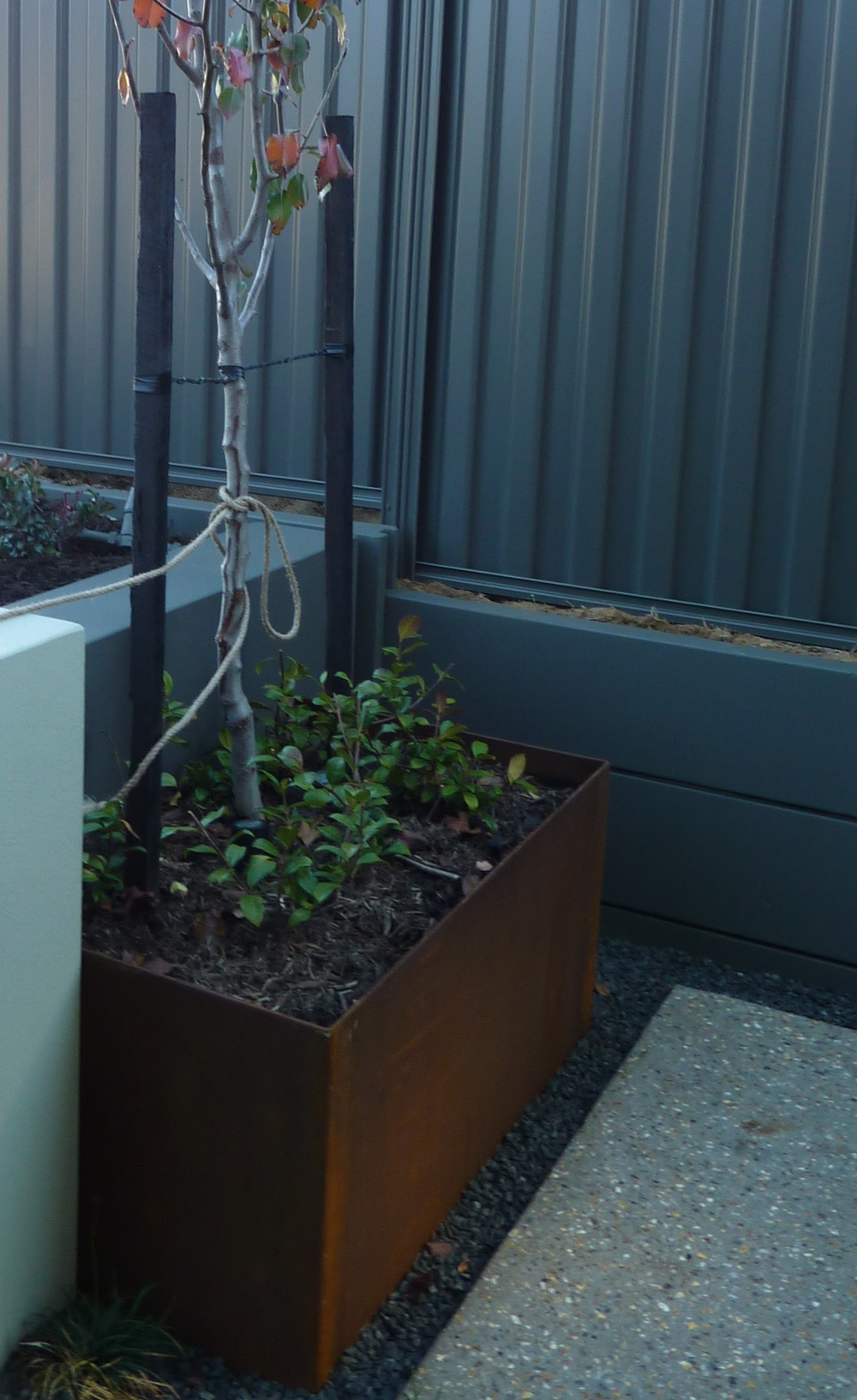 A steel planter that I designed into a TDL garden.  This one hides an ugly junction between retaining walls.