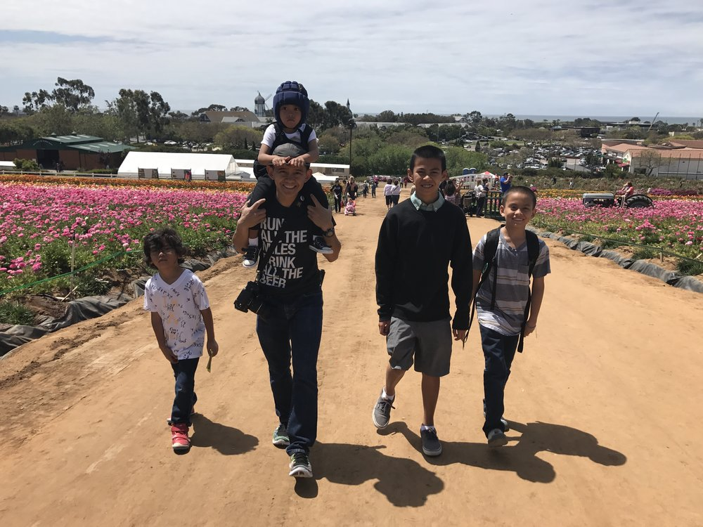 The  Flower Fields in Carlsbad .  So beautiful but oh the allergies for 3 of these boys!
