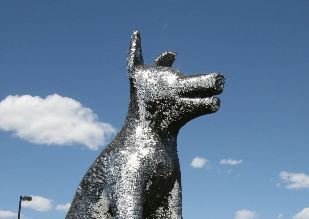 DMAS Sun Dog final.jpg