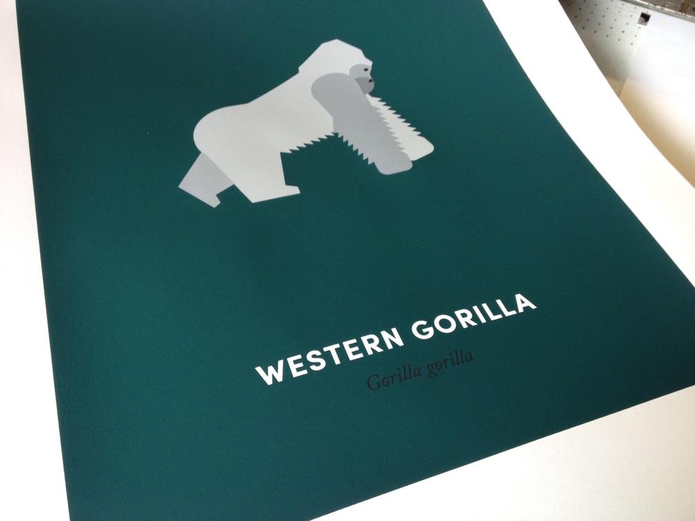 Gorilla-print-1.jpg