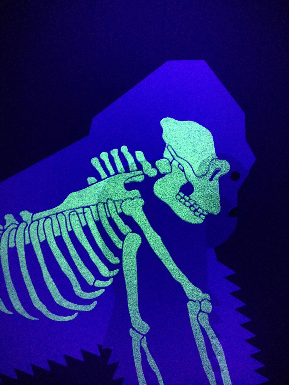 Gorilla-skeleton.jpg