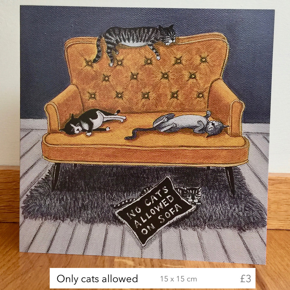 no cats allowed (with label).jpg