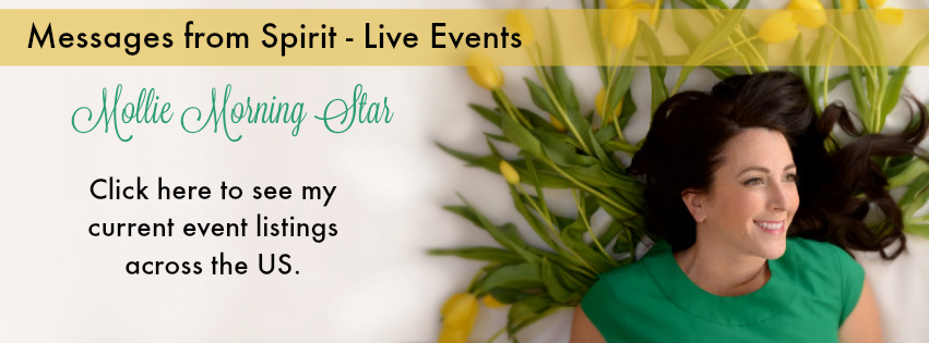 Psychic Medium Readings - Chicago, IL Milwaukee, WI - Live Events - Messages from Spirit