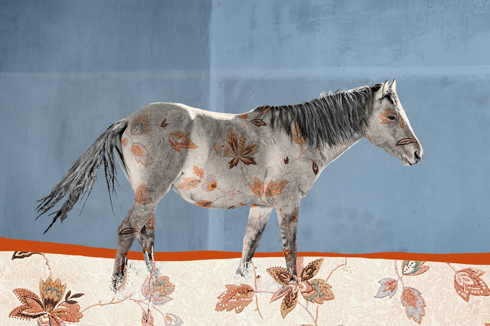 { Horse No. 20  } Pictured is a mustang from the Hawk band of the Pryor Mountains Wild Horse Range in Montana. The floral pattern is a photograph I made of vintage wallpaper from the Kramer Dress Shop, built in 1863, in the town of Virginia City, Montana. Virginia City is a National Historic Landmark and began in 1863 when gold was discovered in Alder Gulch. The solid colored background are the painted walls of the abandoned Hotel Meade which still stands in the ghost town of Bannack, Montana.