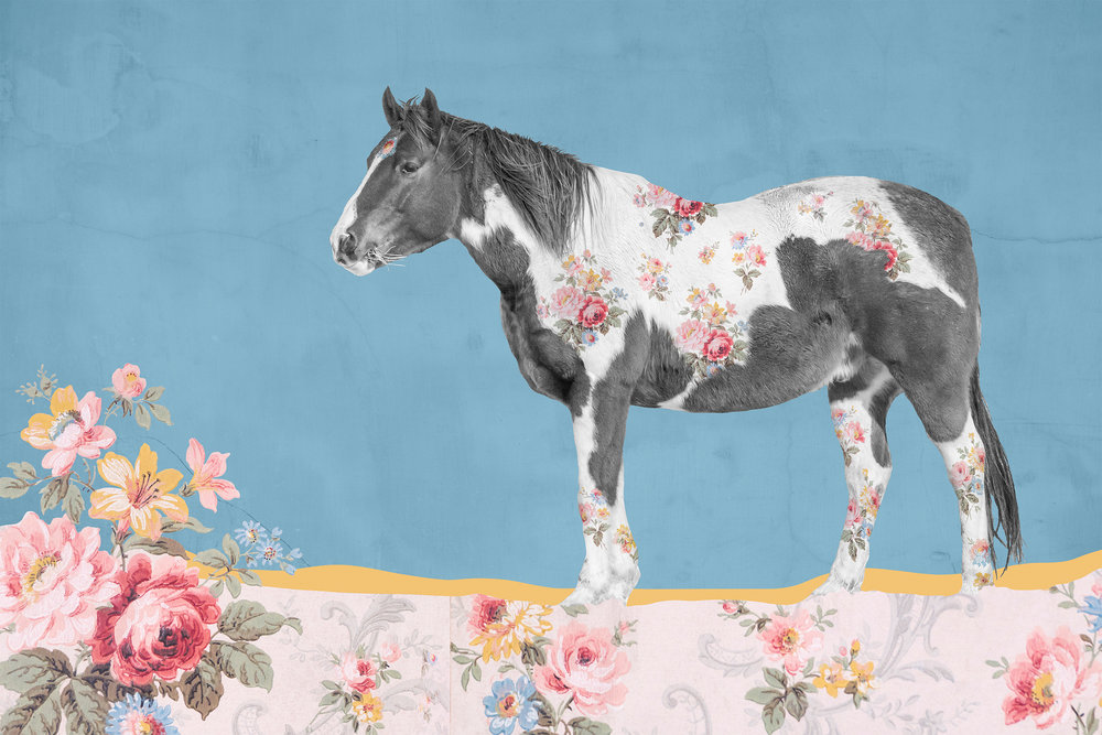 "{ Horse No. 25 }  I photographed this horse on the a Montana ranch in the aptly named Paradise Valley along the northern boundary of Yellowstone National Park. I photographed this wallpaper in a historic building in Durango, Colorado. In 1939 the Hogan family purchased this building in which they lived in the second floor and opened a western clothing store on the ground floor. For the next 70 years ""Hogan's"" was a staple along Main Avenue. This wallpaper was hung in their upstairs apartment, likely in the 40s or 50s. The building now houses Sorrel Sky Gallery and, thanks to the ownership's insistence on preserving the history of the building and the family who lived and worked there, this wallpaper still hangs there today to create a charming and unique environment to display fantastic artwork in."