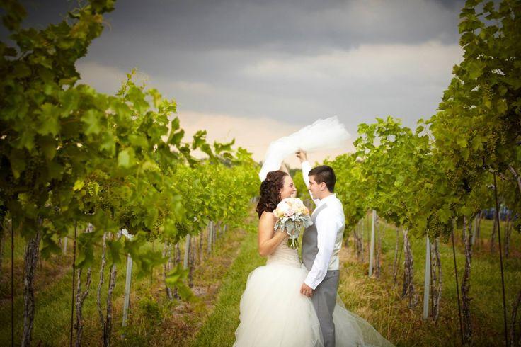 Cassandra dattoli. springfield, il wedding planner.