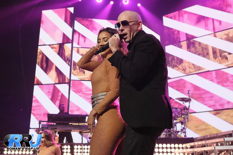 Pitbull_-18.jpg