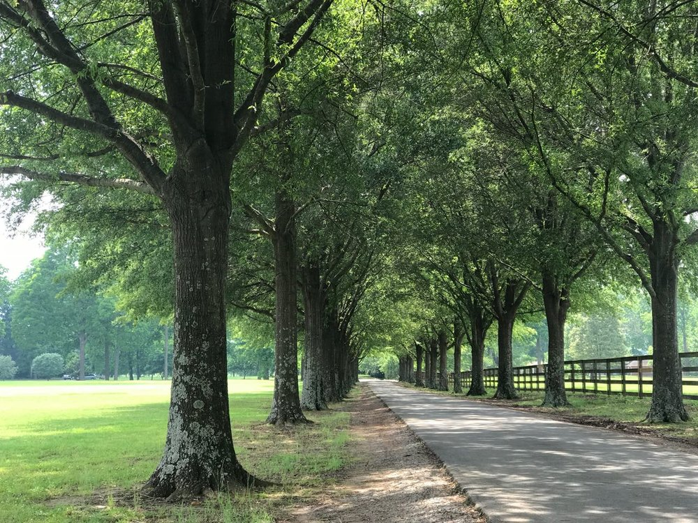 An Apology And A Story... -