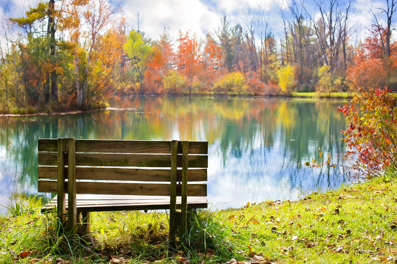 wood-bench-986347.jpg
