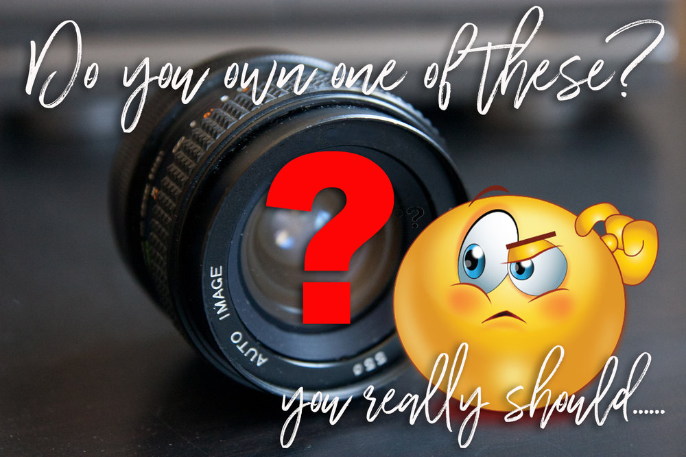 Do you own one of these? A nifty fifty is a must for any photographer!