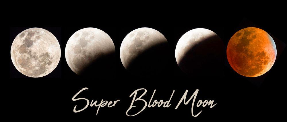 Blood Moon - Total Lunar Eclipse