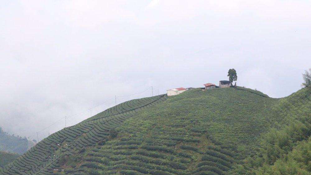 Shan Lin Xi 2.jpeg