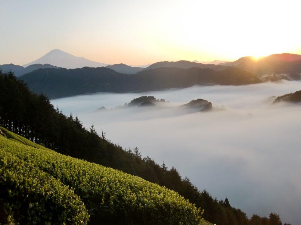 Mt. Fuji from Ryogouchi.JPG