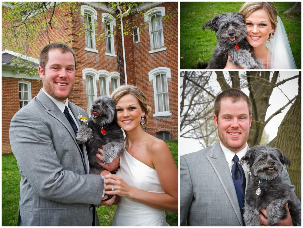 Such a cute family! We got to meet their dog Lou at their engagement session. Isn't he adorable?!