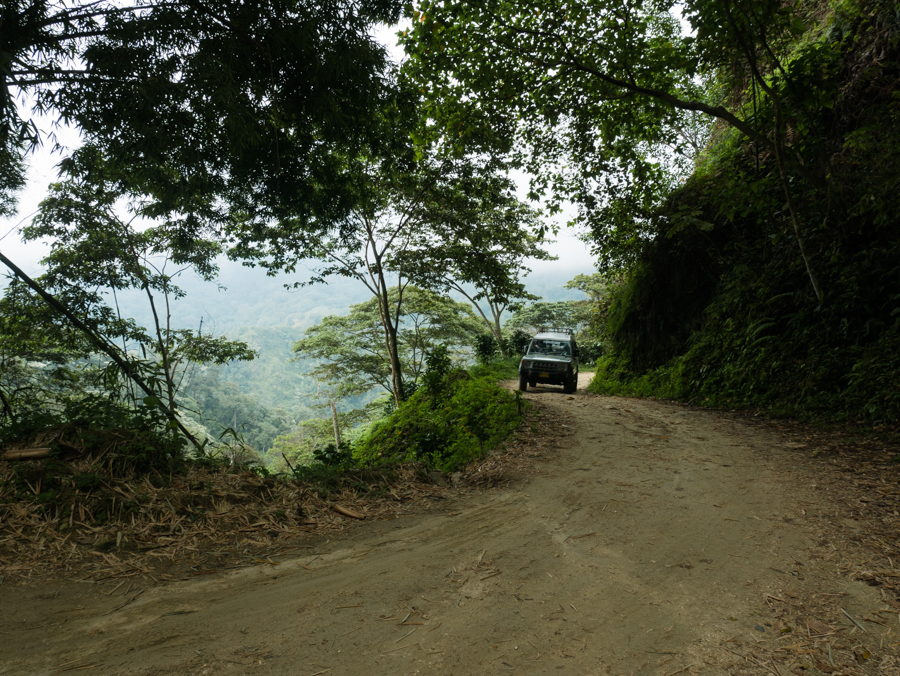 Road to coffee finca