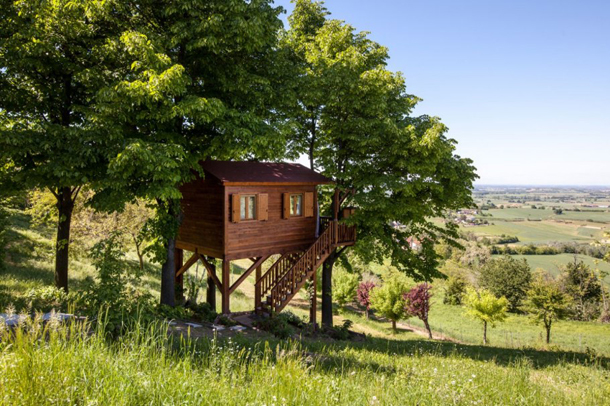 photos-luxury-tree-houses-airbnb.sw_.18.airbnb-tree-houses-ss15.jpg
