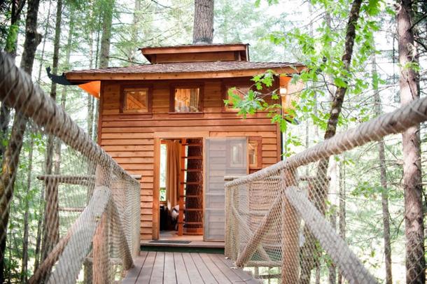 photos-luxury-tree-houses-airbnb.sw_.12.jpg