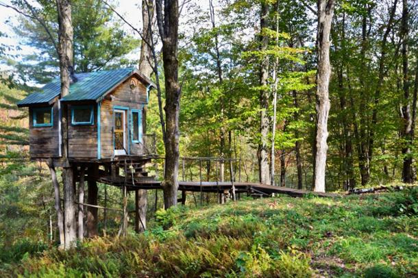 photos-luxury-tree-houses-airbnb.sw_.10.jpg
