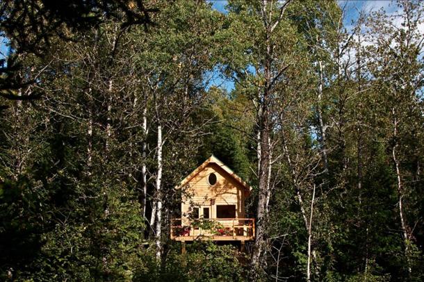 photos-luxury-tree-houses-airbnb.sw_.14.jpg
