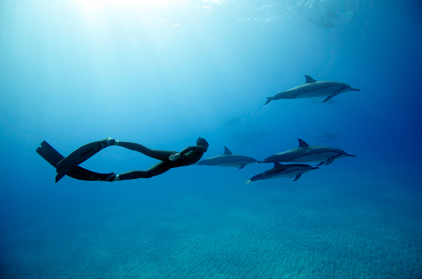 Saenz-de-Santamaria-Freediving-Hawaii-2012-14.jpg