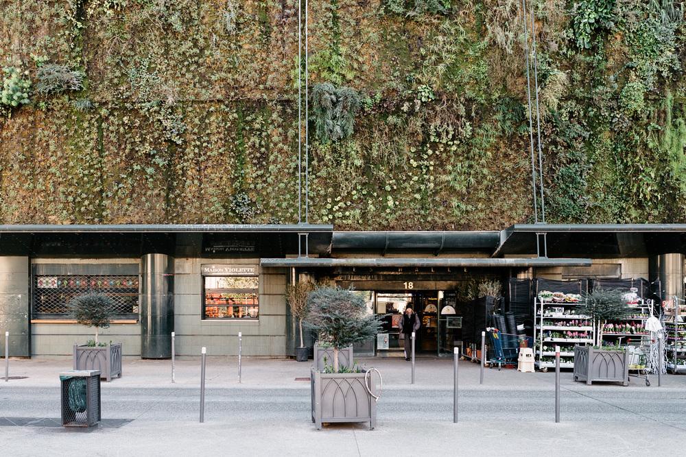 Les Halles - Avignon