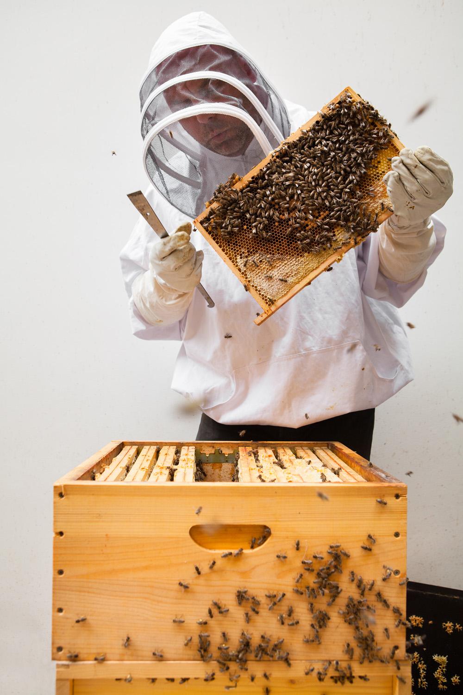 Graanmarkt13-Honey-03.jpg