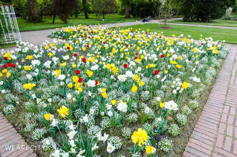flora_botanischer_garten_eroeffnung_wearecity_koeln-16.jpg