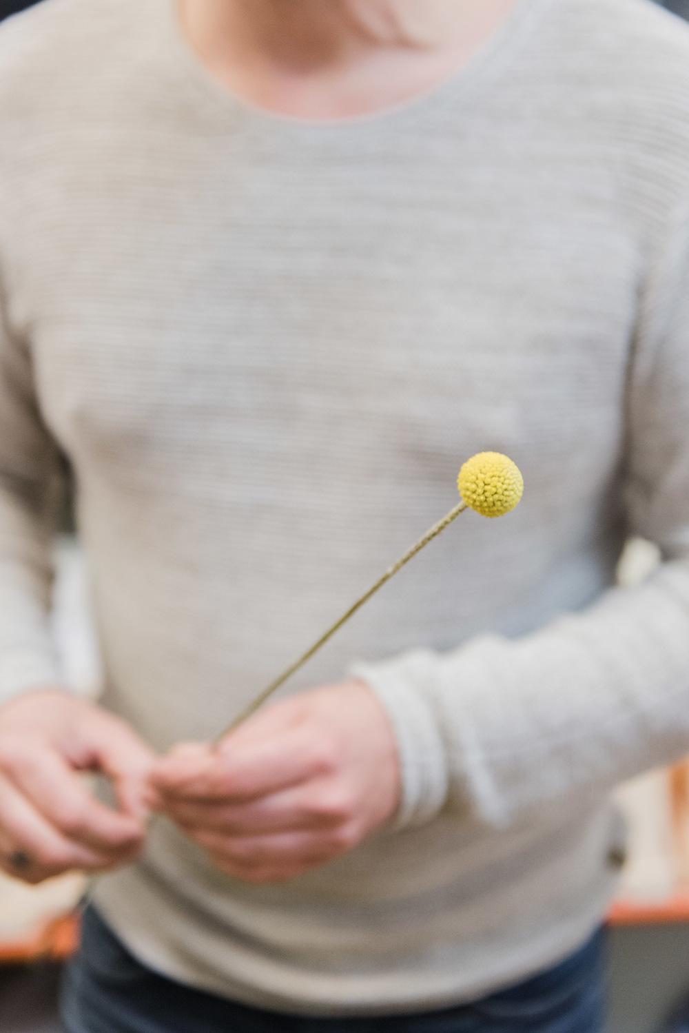 bloomon-passagen-wearecitykoeln-pramudiya-2.jpg