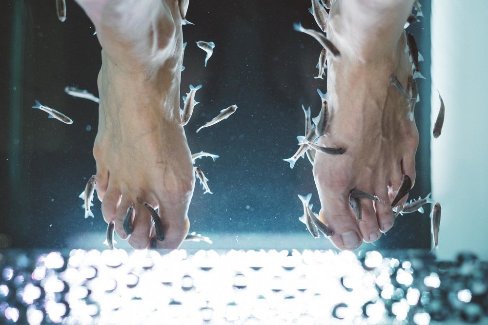 nemo-fishspa-koeln-wearecity-atheneadiapoulis-6.jpg