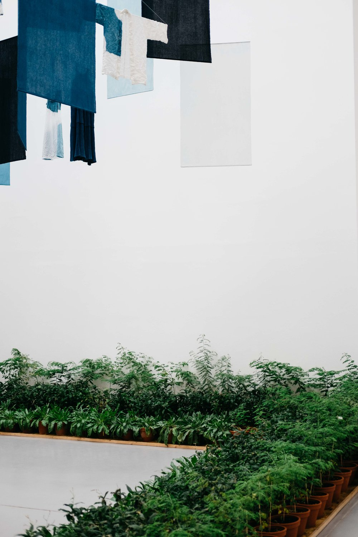 documenta14-kassel-kunst-wearecity-simonhariman-2017-108.jpg
