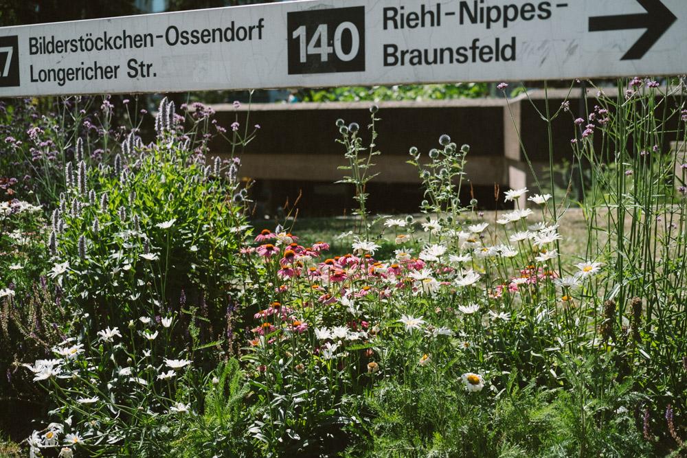tagdesgutenlebens-agnesviertel-koeln-wearecity-atheneadiapoulis-58.jpg