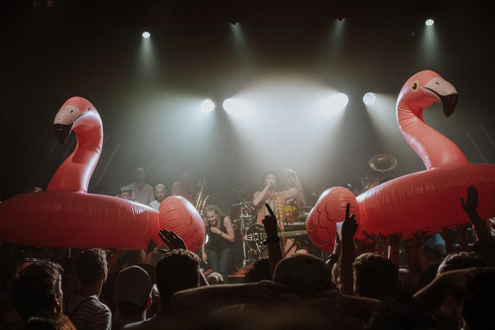 querbeat-musik-brasspop-karneval-koeln-wearecity-atheneadiapouli-hariman-84.jpg