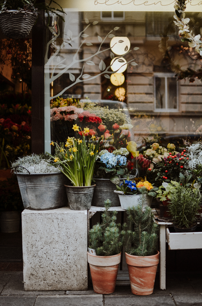 bluetetraeume-floristen-koeln-Josephine Bruecher-3.jpg