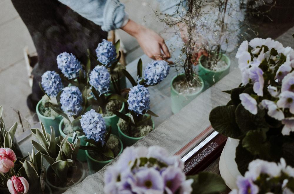 Ou j'ai grandi-floristen-koeln-Josephine Bruecher-2.jpg