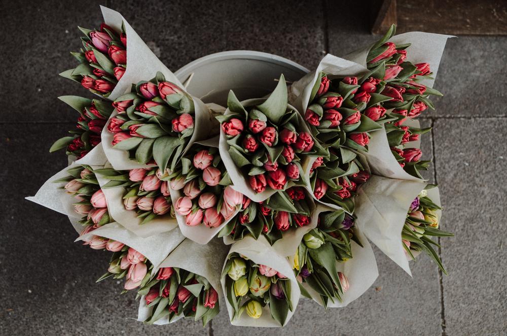 Ou j'ai grandi-floristen-koeln-Josephine Bruecher-3.jpg