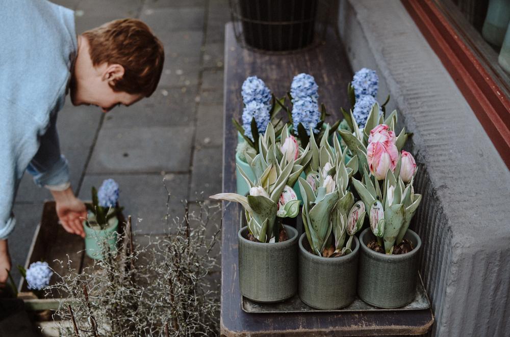 Ou j'ai grandi-floristen-koeln-Josephine Bruecher-1.jpg