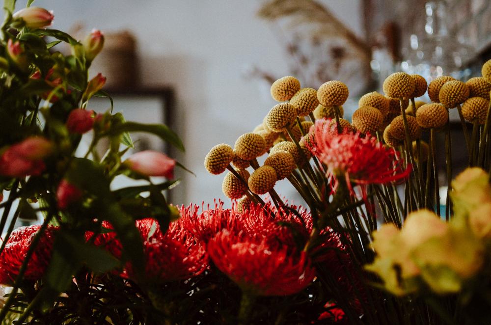 goldregen-floristen-blumen-koeln-Josephine Bruecher-2-2.jpg