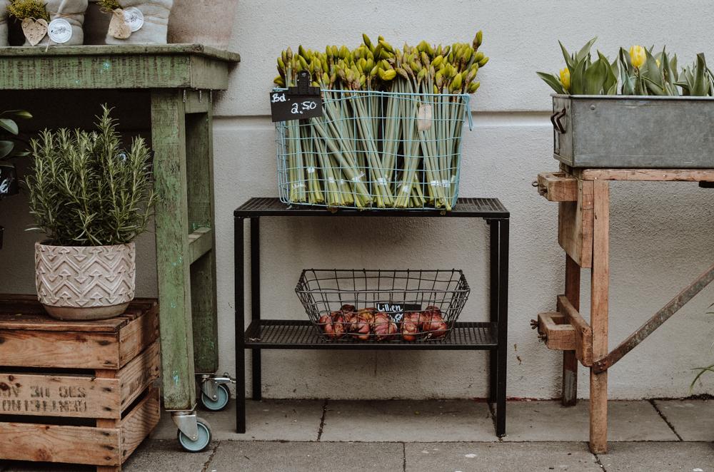 goldregen-floristen-blumen-koeln-Josephine Bruecher-3.jpg